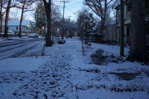Our neighborhood is a winter wonderland