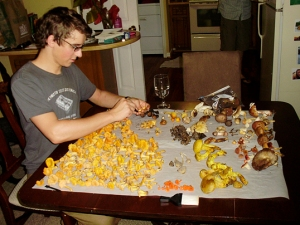 A huge bounty . . . I am cleaning off the Chanterelles (the yellow ones on my side of the table)