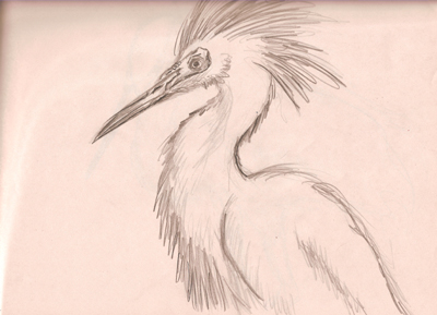 And here is a more completed heron.  Kind of looks like a made up creature but I was actually looking at photograph to get the general proportions and look of the bird