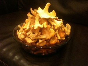 bowl of chanterelles