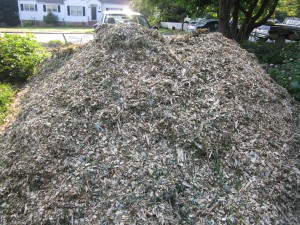 Wood mulch pile